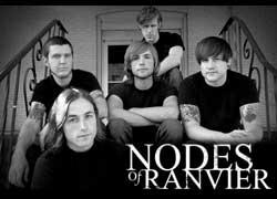 Nodes Of Ranvier Purevolume